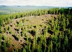 Tunguska (in the late 1990s, I believe)