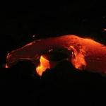 Lava Whale
