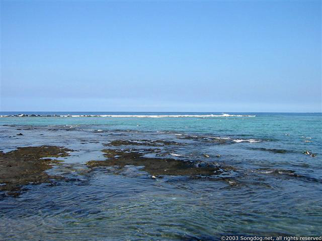 Kahaluu Tide Pools